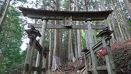 三峯神社奥宮鳥居